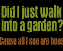 did-i-just-walk-into-a-garden